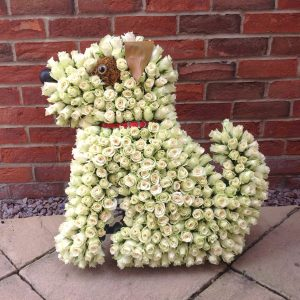 Dog funeral tribute with roses. Spalding. Lincolnshire